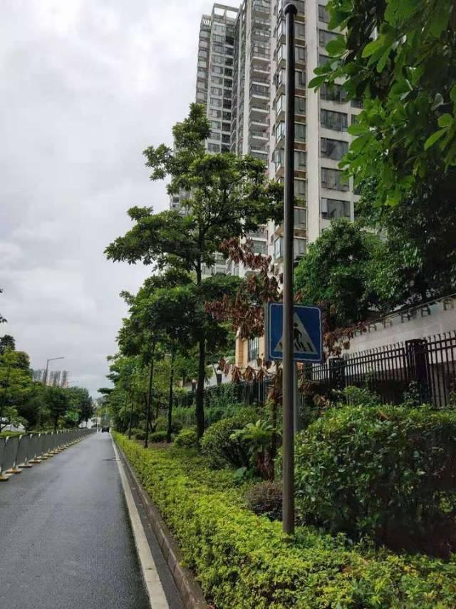 深圳市龙岗区中心城悦城花园