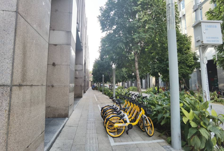 上海6大商务区写字楼租金统计,从陆家嘴到五角广场真实租金揭秘