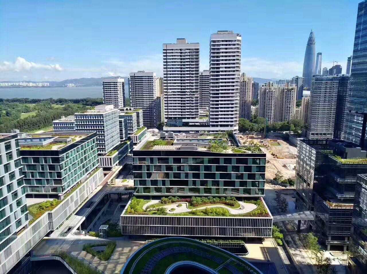 南山 深圳湾生态园5栋A座 281平 格局10+1  精装写字楼出租
