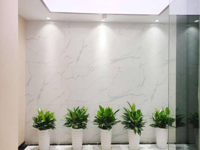 南山科技园比克科技大厦 精装修全套家私1个月免租期